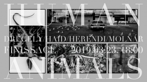 Human Animals Finissage