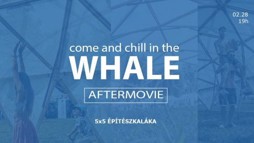 Come and chill in the Whale!