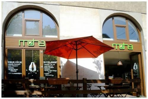 Kotócz Dániel és Cilikert zöld élő installációja a Moha Cafeban