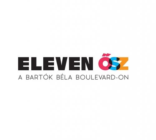 Eleven Ősz kreatív programpályázat
