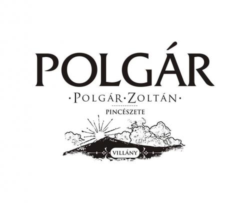 Polgár Zoltán borbemutatója