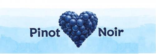 Pinot Noir fajtakóstoló