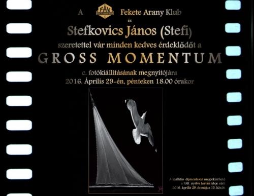Gross Momentum kiállítás